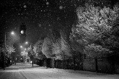 Nightime snow, Rathmines, Dublin, Ireland (2c..) Tags: road city ireland sky bw dublin white snow black tree ambient 2c cmwdblackandwhite cmwdweeklywinner therebeastormabrewin 72dpipreview lowresolutionpreview