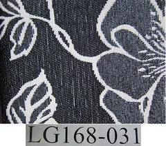 IMG_4116 (Large) (Medium)
