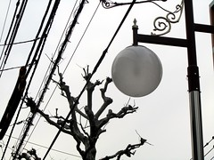 15/365: Collaboration (joyjwaller) Tags: city sky blackandwhite nature lines japan contrast tokyo industrial electricity metropolis takadanobaba urbanjungle collaboration project365 anuneasytruce