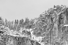 Ridge and Trees, Yosemite Valley, 2010 (larkvi) Tags: california trees winter usa snow unitedstates ridge yosemite yosemitenationalpark sierras winslow sierranevadamountains yosemitenp larkvi seanwinslow larkvicom yosemitvalley