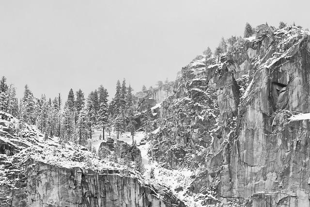 Ridge and Trees, Yosemite Valley, 2010