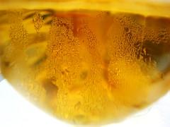 Sagres Beer (MelindaChan ^..^) Tags: food portugal beer restaurant yummy lisbon mel eat meal melinda portuguese sagres  chanmelmel melindachan