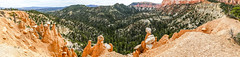 Balanced Rock Hoodoos Panorama (Serendigity) Tags: brycecanyonnationalpark utah hoodoos nature outdoors unitedstates landscape usa panorama