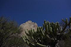 La Pea de Bernal (cesarmuniz1) Tags: monoliths