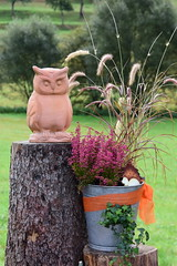 (:Linda:) Tags: germany thuringia village brden bucket owl flowerpot bird treestump