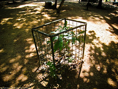 Тюрьма для дерева