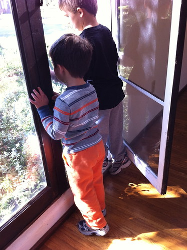 The boys discover that the window opens