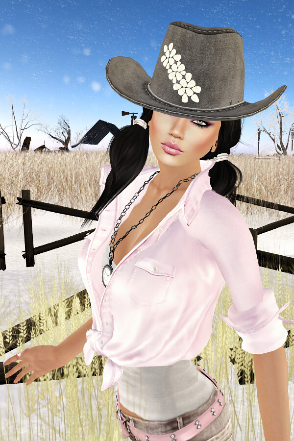 I wanna be a cowgirl #1