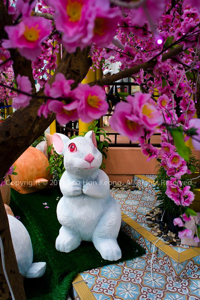 Happy Chinese New Year (Rabbit) @ KL, Malaysia