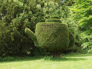 Amusing topiary in the shape of a teapot at Lake House in hampshire