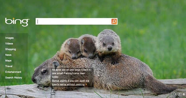 Bing Groundhog Day