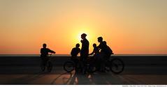 213 - the cyclists (Ata Foto Grup) Tags: sunset shadow sun bicycle kids cyclists kid hare afternoon cyclist shadows istanbul cycle silhuette günbatımı güneş gölge lignt silüet bisiklet gölgeler sahilyolu akşamüstü yougn akşamüzeri bisikletliler