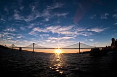 Bright San Francisco Morning (Explore) (Scott Barlow) Tags: sanfrancisco bridge sunrise lens bay nikon raw nef suspension fisheye explore d300 105mm oaklandbaybridge newvision wondersoftheworld explored nikon105mmf28 1xp peregrino27newvision
