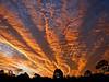 Heart of Gold.jpg (dazza17 - DJ) Tags: sunset sky downs au australia qld sunshinecoast scapes sippy seinna sippydowns daryljames dazza17