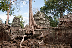 Ta Prohm (d90fz8) Tags: travel tree temple nikon asia asien cambodia kambodscha southeastasia südostasien ruin unesco ruine angkor taprohm baum worldheritage tempel weltkulturerbe welterbe d90
