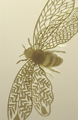 Paper Bee (Elsita (Elsa Mora)) Tags: light art nature animal silhouette bug paper design fly flying blog wings artwork natural sweet decorative bee bumblebee etsy papercut intricate elsita papercutting lightcolors ivorycolor elsamora