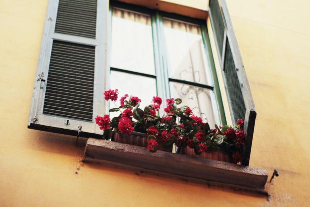 Milan 05