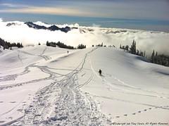 Mt. Rainier - Backcountry Skier (Tony Varela Photography) Tags: usa snowshoe snowshoeing wintersports mtrainiersnowshoe mtrainiersnowshoeing mtrainierusa photographertonyvarela