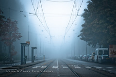 Tram Fog (N+C Photo) Tags: road morning travel trees vacation holiday signs holland building cars netherlands beautiful station amsterdam fog les train photography design casey haze nikon nadia europe arte cross walk platform tracks photographers eu tram images structure adventure collection viajes wires artists transportation getty mooi ajax traveling fotografia middle bas mokum pays mundo cultura travelers gettyimages niederlande aventura d300 benelux expresin 2470f28 pasesbajos urbansuburban abigfave gettyimagescom gettycollection mygearandme mygearandmepremium dblringexcellence tplringexcellence artistoftheyearlevel3 cettycollection leshollandes