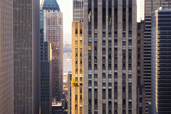 a tree grows in midtown (andrew c mace) Tags: above nyc newyorkcity morning roof urban tree tower rooftop skyscraper day cityscape manhattan rockefellercenter aerial midtown palacehotel roofgarden newyorkpalace nikkor70300mm nikoncapturenx nikond90