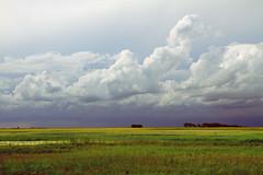 August (Shandi-lee) Tags: summer canada clouds landscape driving stormy august roadtrip saskatchewan prairies movingcar