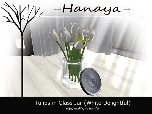 -Hanaya- Tulips in Glass Jar (White Delightful)