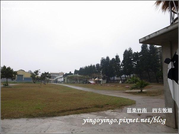 苗栗竹南_四方牧場20110220_R0017948