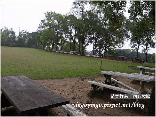 苗栗竹南_四方牧場20110220_R0017961