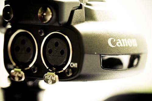 Canon dingus