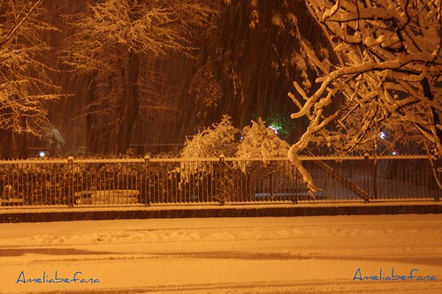 la neve di notte
