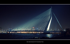 Blue Rotterdam ( WimKok) Tags: city bridge holland canon river licht rotterdam nightshot nederland thenetherlands citylights nik brug maas kopvanzuid stad erasmusbrug lightroom zwaan rivier erasmusbridge demaas 17mm avondopname wilhelminapier nachtfoto dezwaan 2sec rivermaas sigma1770 eos50d canoneos50d artistoftheyearlevel3 artistoftheyearlevel4