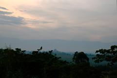 The Rwenzori at dusk