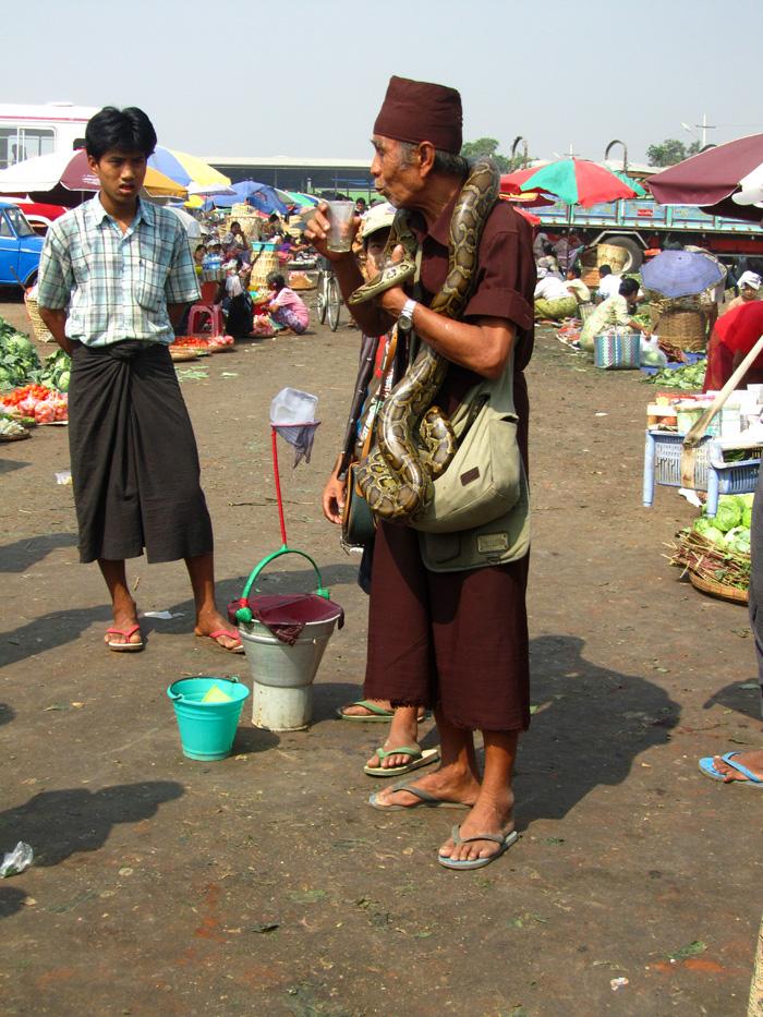 Snake Charmer Myanmar