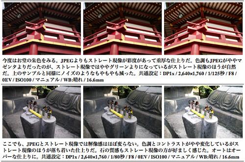 Sigma DP1x JPEG vs RAW image conversion quality test