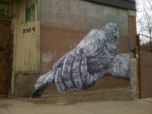 "GAIA ""Carrier Pigeon"" by billy craven"