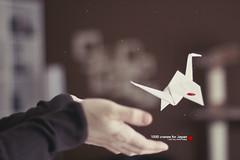 1000 cranes for Japan (Maegondo) Tags: japan canon germany bayern deutschland bavaria 50mm earthquake dof bokeh crane 14 donation tohoku creamy ingolstadt eos550d donationjp