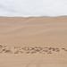 A Gigantic Dune