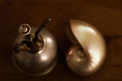 some little deco stuff  192/365 (Jutta Bauer) Tags: brown still lowlight decoration lowkey nautilus selectivefocus 365days 192365 inmyhomeoffice