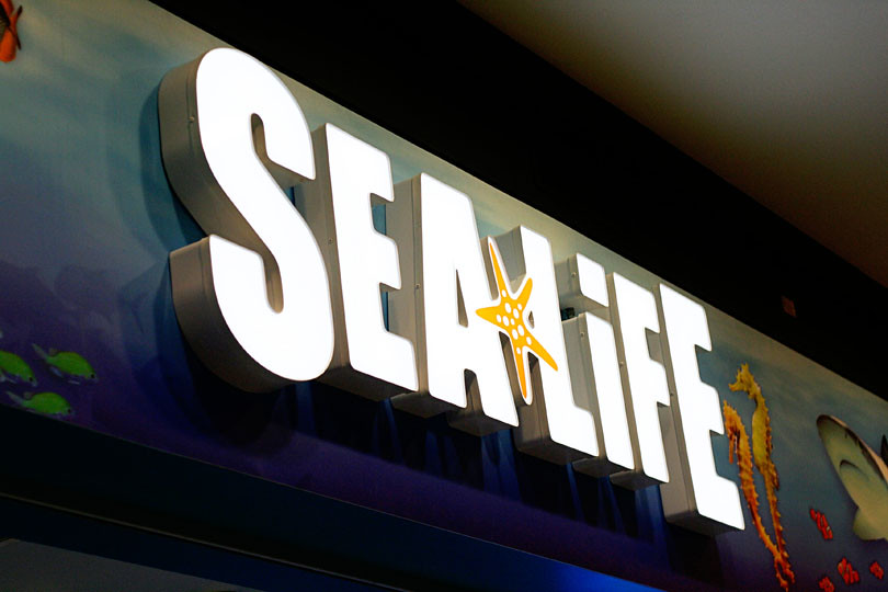 Sealife Minnesota