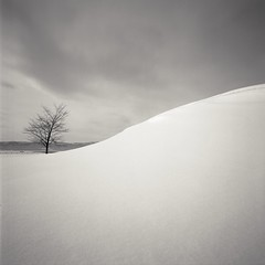 hillock and tree (Eye) Tags: longexposure hokkaido fujifilm 30seconds acros100 nd400 nd8 bronicaec zenzanonmc50mmf28
