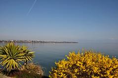 Printemps sur le lac (Diegojack) Tags: eau lac printemps paysages