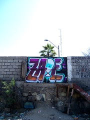 Zade (COLOR IMPOSIBLE CREW) Tags: chile graffiti north playa fest norte zade 2011 huasco fros