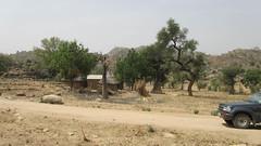 West Africa-2553