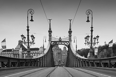 Liberty Bridge (baloghz72) Tags: blackwhite budapest libertybridge greatphotographers platinumheartaward mygearandmepremium ringexcellence blinkagain