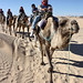 110401 Diplomats discover charm of Tunisian Sahara 02   دبلوماسيون يكتشفون سحر الصحراء التونسية   Les diplomates découvrent le charme du Sahara tunisien