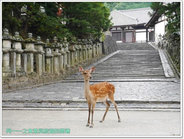 奈良景點.美食.東大寺.二月宮.鹿.葛切.日式甜點image002