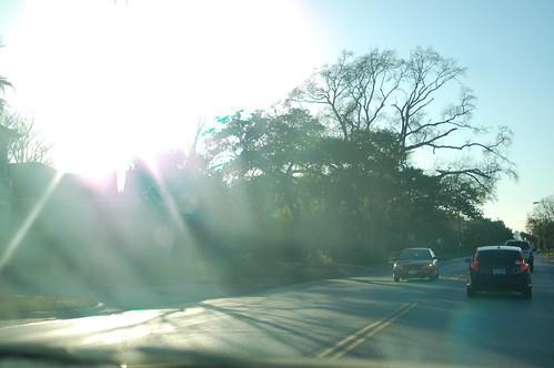 2011 01 30 PM 5