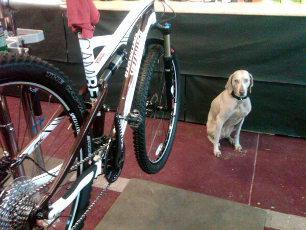 Pisgah the wonder mutt with my Camber Pro 29er