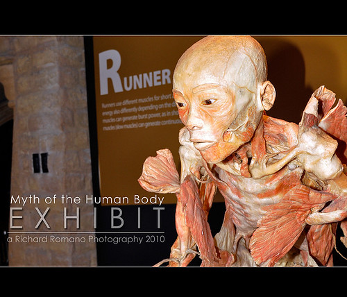 Myth of the Human Body Exhibit 4