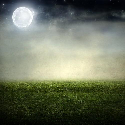 [フリー画像] グラフィックス, CG, 月, 草原, 201102050500